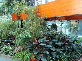 July 4, 2012, Ottawa, Canada Bank Of Canada Front Entrance Way Indoor Inside Botanical Conservatory