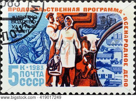 Ussr - Circa 1983: Postage Stamp 'cattle Breeding' Printed In Ussr. Series: 'food Program Of The Uss