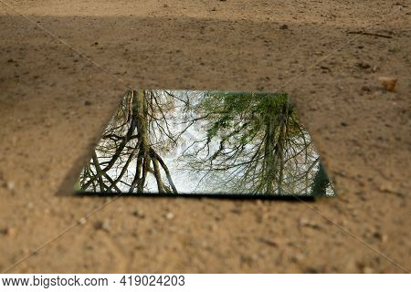 Angular Mirror Lies On A Sandy Path In The Forest And Reflects The Trees