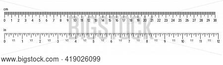 Size Indicators With Different Unit Scales. 30 Centimeters Vs 12 Inches. Flat Style Vector Illustrat