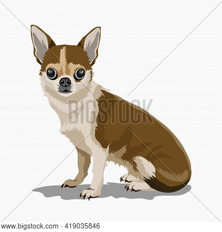 Cute Little Decorative Dog. Puppy. A Beautiful Brown Puppy With Big Eyes Wags Its Tail. Isolate. Vec