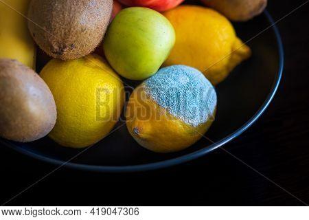 Spoiled Lemon With Light Turquoise Textured Mold Among Ripe Colorful Whole Fruits: Apples, Kiwi, Ban