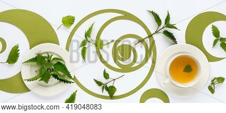 Banner, Nettle Tea Cup, Stinging Nettle Herb Leaves. Ornate Flat Lay, Green Fibonacci Sequence Circl