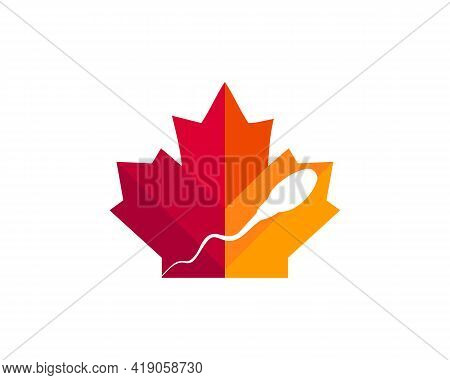 Maple Sperm Cell Logo Design. Canadian Sperm Cell Logo. Red Maple Leaf With Sperm Cell Vector