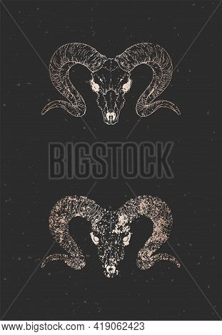 Vector Illustration With Two Variants Of Hand Drawn Wild Ram Skulls On Black Background. Gold Silhou