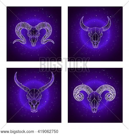 Vector Set Of Four Illustrations With Hand Drawn Skulls Wild Buffalo, Bull And Rams On Purple Abstra