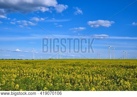 Yellow Blooming Oilseed Rape With Wind Energy Plants In The Back Seen In Rural Germany
