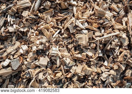 Closeup Of A Large Heap Of Shredded Wood After The Felling Of A Large Number Of Tall Trees. The Heap