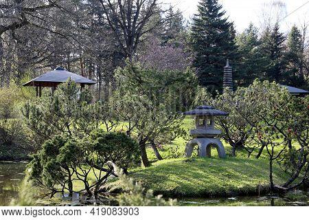 Japanese Garden, Oriental Culture. Old Yukimi-toro Stone Lantern, Pagoda, Gazebo And Pond With Pine