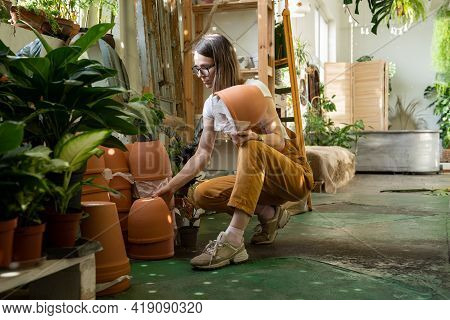 Indoor Gardening And Houseplant Store Business. Young Female Florist Hold Clay Flowerpots For Replan