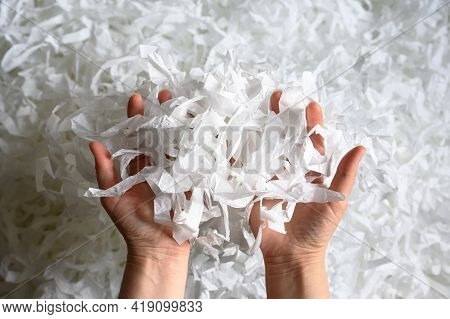 Shredded Paper Heap In Hands, Top View Of Many White Strips. Pile Of Cut Paper Like Confetti For Par