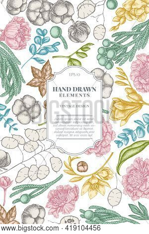 Card Design With Pastel Ficus, Eucalyptus, Peony, Cotton, Freesia Brunia Stock Illustration