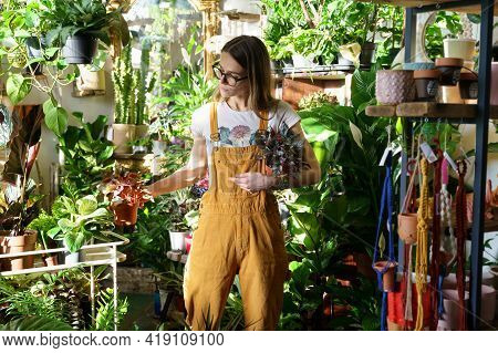 Florist In Greenhouse. Female Gardener Hold Potted Plants For Sale In Flower Shop. Young Domestic Pl