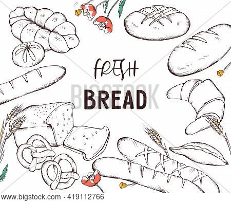 Banner Or Poster Template With Hand Drawn Image Of Various Bread And Bakery Production. Banner For B