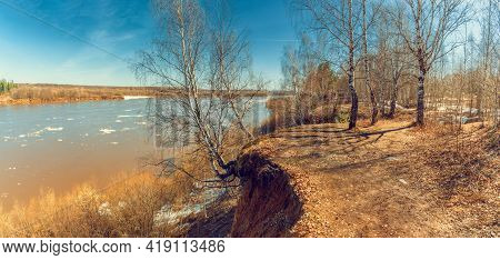 Spring Sunny Landscape With Birch Trees On The River Bank.
