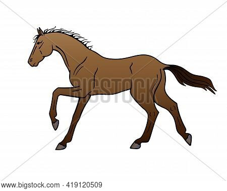Bay Horse Galloping - Vector Full Color Illustration. A Galloping Stallion. Beautiful Graceful Horse
