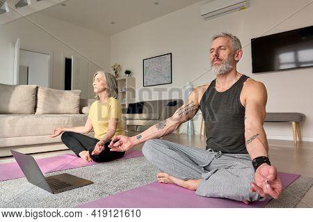 Healthy Serene Old Mid Aged Senior Couple Meditating Doing Virtual Yoga Poses, Learning Breathing On