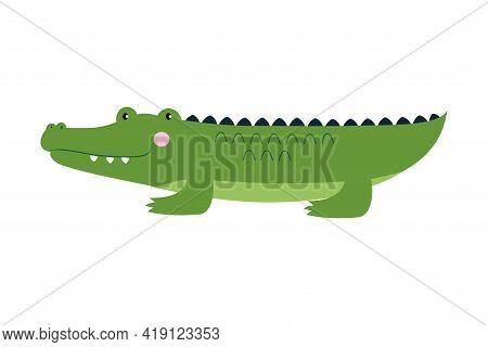 Cute Crocodile Baby Animal, Exotic Tropical Amphibian Animal Vector Illustration
