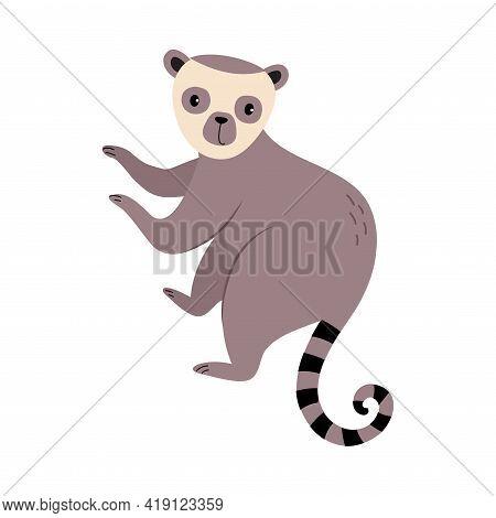 Cute Lemur Baby Animal, Exotic Tropical Fauna Element, African Savanna Inhabitant Cartoon Vector Ill