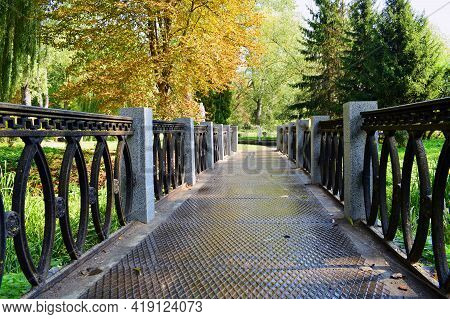 Bridge In The Park. Iron Bridge Close-up In The Autumn Park. Stunning Iron Bridge Across The River O