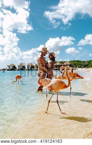 Aruba Beach With Pink Flamingos At The Beach, Flamingo At The Beach In Aruba Island Caribbean. A Col