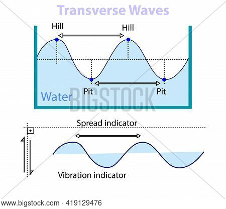 Wave Motion On The Water Surface. Wave Motion Types. Periodic Motion. Types Of Wave Motion In Physic