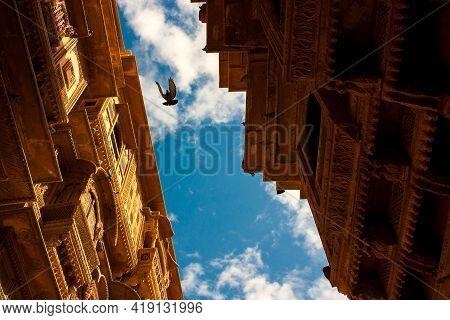 Pigeon Flying Inside Jaisalmer Fort Castle, Rajasthan, India.
