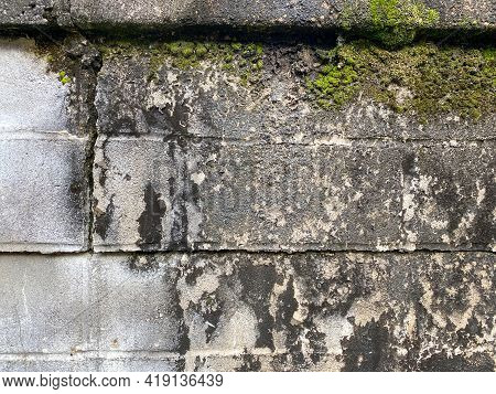 Vintage Fort Garden Wall Made Of Block Bricks Cracked And Covered With Moss