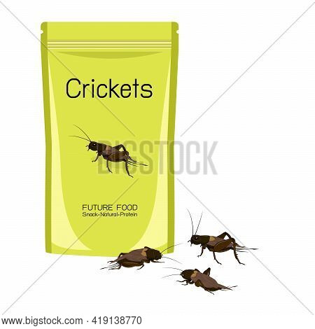 Crickets Insects Deep-fried Crispy In Packaging Snack Pouch Wrapper Ready To Eating For Take Away. I