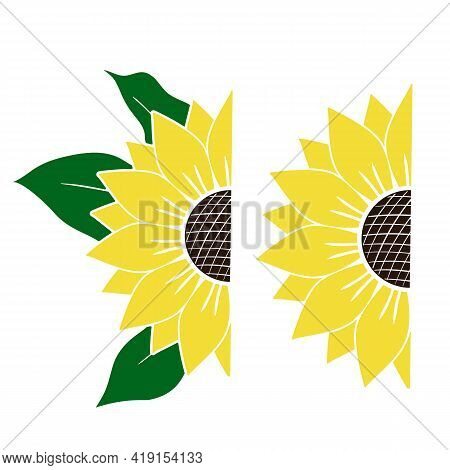 Vector Set Of Yellow Half Of Sunflowers With Green Leaves Isolated On White Background. Bright Summe