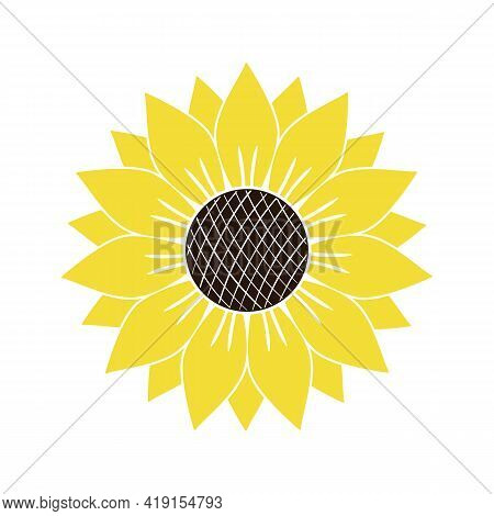 Vector Illustration Or Icon Of Yellow Sunflower Isolated On White Background. Bright Summer Flower C