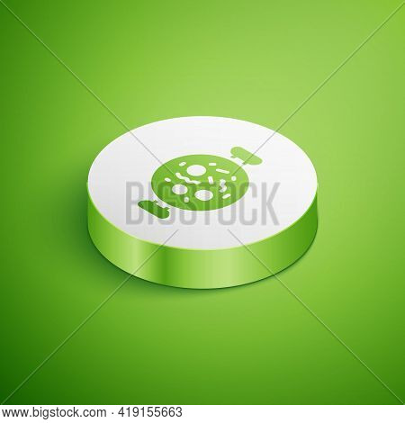 Isometric Chicken Tikka Masala Icon Isolated On Green Background. Indian Traditional Food. White Cir
