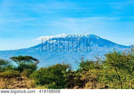 The famous snow-capped Mount Kilimanjaro in the flat savannah. Plain acacias of the Horn of Africa. Amazing Amboseli Park. The exotic Africa.