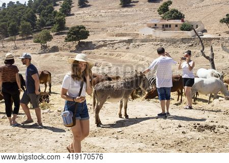 Spain, Penagila - June 21, 2019: Tourists Take Pictures And Observe Goats, Horses, Donkeys And Other