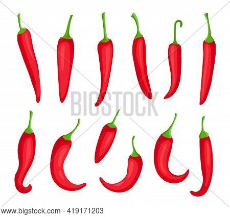 Chili Peppers. Cartoon Hot Red Pepper. Cayenne And Capsaicin Ingredient For Chilli Sauce. Mexican Pe