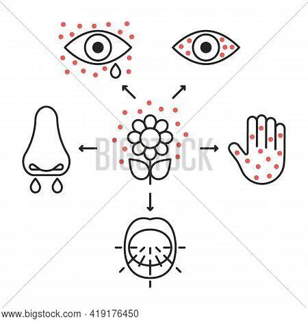 Allergy Symptoms Line Icons, Irritation Organs Senses. Inflammation Of Eyes, Lacrimation, Sneeze, Bl