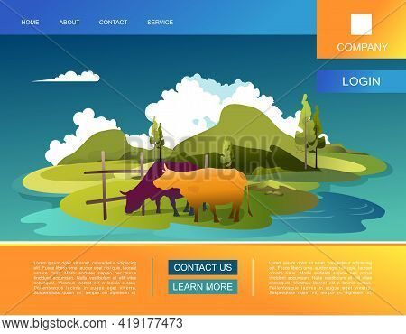 Vector Banner Template Cartoon Wildlife Landscape Summer Meadows With Hills, Farm Pastures, Organic