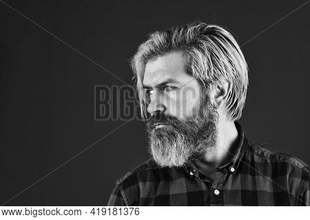 Hairdressing Salon. Hipster Bleached Hair. Barber Fashionable Master. Bearded Man Long Beard. Brutal