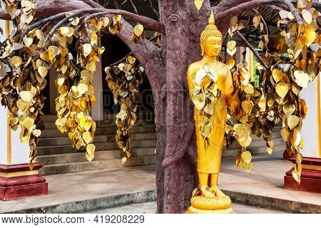 Buddha Statue Standing In Front Of Buddhist Temple Wat Tham Suea Near Tiger Cave Temple In Krabi, Th