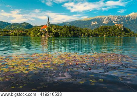 Wonderful Pink Lotus Flowers Blossom On The Lake. Pink Water Lily Flowers And Pilgrimage Church In B