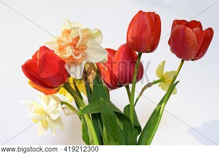 Very Nice Colorful Spring Flower Bouquet Close Up