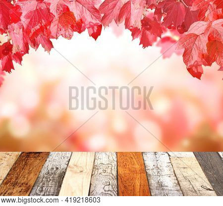 Old wooden desk with nature fall background. Vintage wooden table top and viburnum leaves on blurred autumn backdrop. Mock up template. Copy space for text