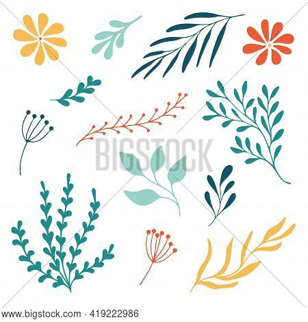 Set Woodland Leaves Illustration. Hand Draw Vector Collection Of Cute Foliage. Summer And Autumn Des