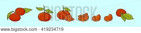 Set Of Clementine Cartoon Icon Design Template With Various Models. Modern Vector Illustration Isola
