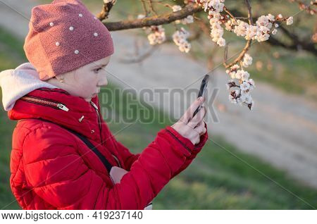 A 10-year-old Girl Photographs An Apricot Tree In Bloom. Teenage Girl Photographing Flowers On A Sma