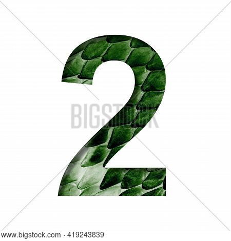 Dragon Scale Font. Digit Two, 2 Cut Out Of Paper On The Background Of The Dark Green Skin Of A Mysti