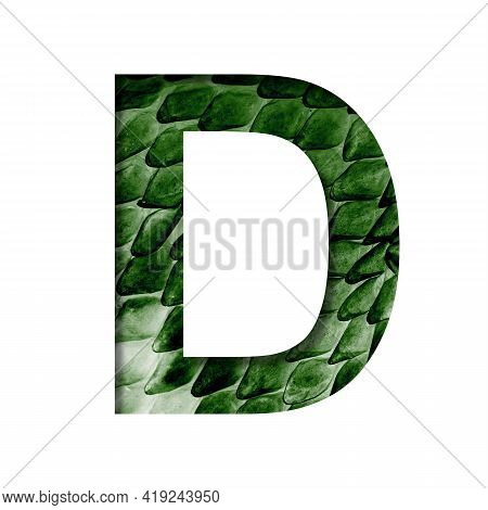 Dragon Skin Font. The Letter D Cut Out Of Paper On The Background Of The Dark Green Skin Of A Mystic