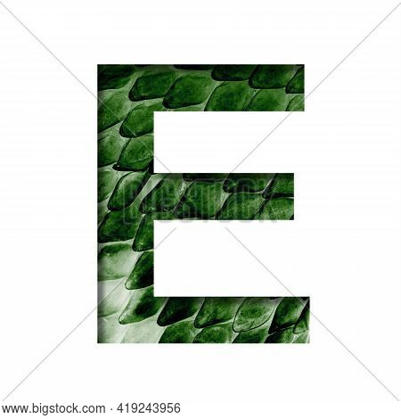 Dragon Skin Font. The Letter E Cut Out Of Paper On The Background Of The Dark Green Skin Of A Mystic