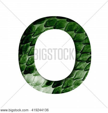 Dragon Skin Font. The Letter O Cut Out Of Paper On The Background Of The Dark Green Skin Of A Mystic