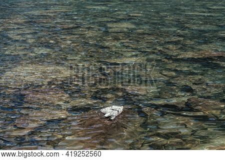Beautiful Nature Background With Stone In Clear Water Of Mountain Lake. Scenic Nature Backdrop Of Ri